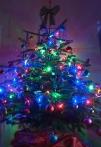 Weihnachtsbaum von Frankies-World.de